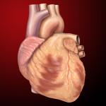 Profilakse protiv infektivnog endokarditisa – 2007